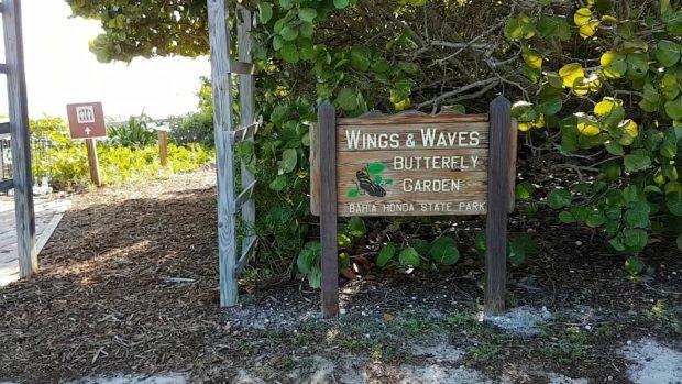 Wings e Waves Butterfly Garden