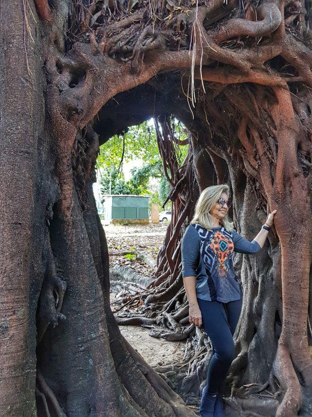 Primeira árvore de Brasília