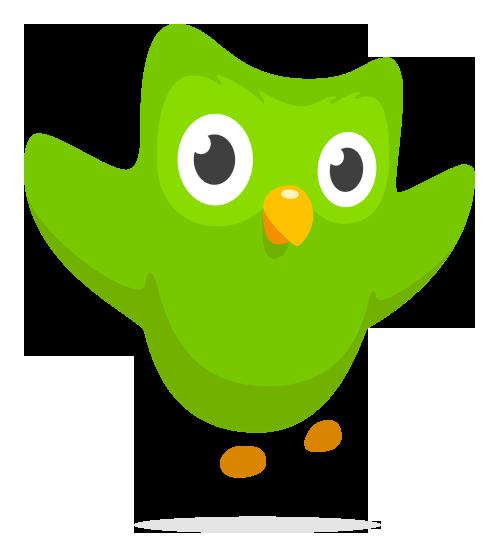 app duolingo
